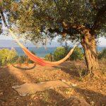 Hängematte mit Meerblick im Garten der Villa Petalidia, Petalida