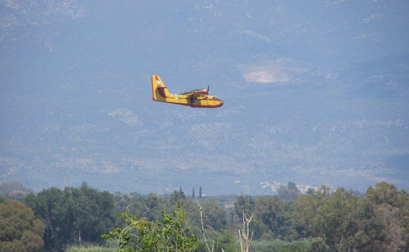 Buschfeuer und Waldbrände
